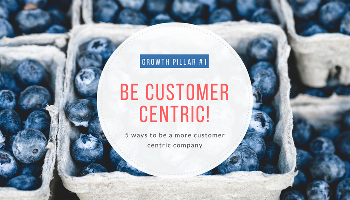 Customer centric BUSINESS GROWTH PILLAR #1
